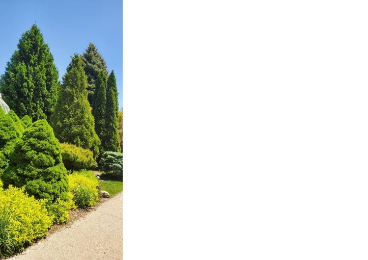 lincoln park 2